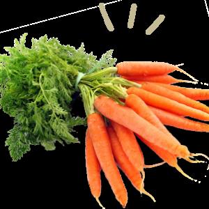 Cenoura molho –  Sem agrotóxico