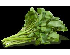 Agrião (molho) Sem Agrotóxico